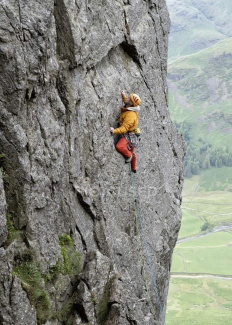 Велика Британія, Лейк-Округ, Ленгдейл-Валлі, Гіммер-Крег, альпініст на скелі — стокове фото