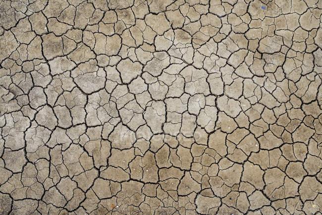 France, Marais salants de Guerande, dry cracked earth — Stock Photo