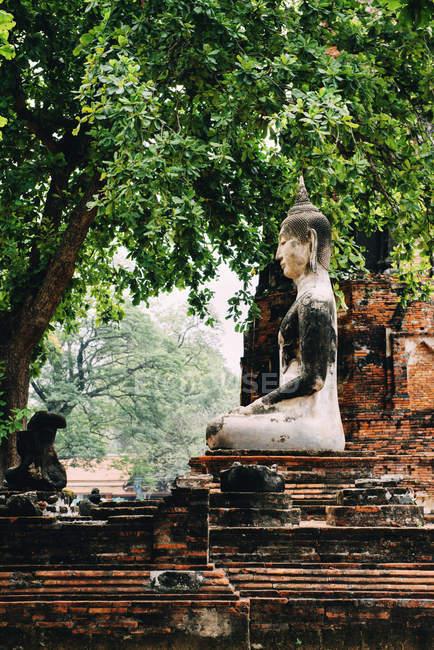 Thailand, Ayutthaya, Buddha statue surrounded by brick pagodes at Wat Mahathat — Stock Photo