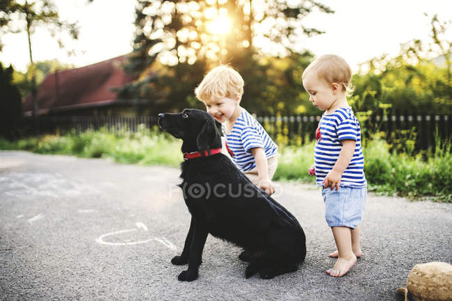 Toddler and his little sister playing with dog outdoors — Stock Photo