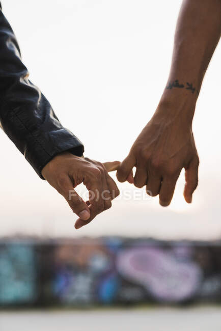 Close-up of lesbian couple holding hands outdoors — Stock Photo