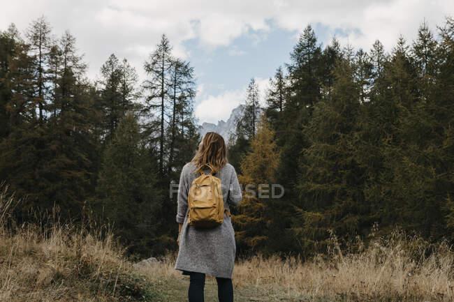 Швейцария, Энгадин, женщина во время похода в лес — стоковое фото