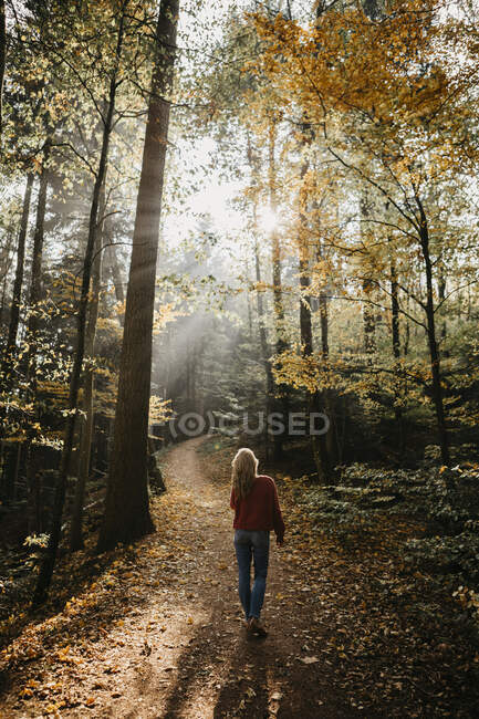 Germany, Black Forest, Sitzenkirch, woman walking in autumnal forest — Stock Photo