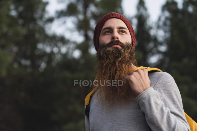 Retrato de homem barbudo em uma floresta — Fotografia de Stock