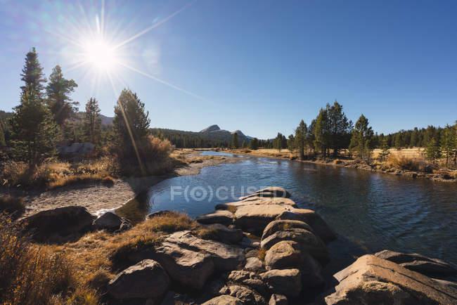 USA, California, Parco Nazionale dello Yosemite, Prati di Tuolumne contro il sole — Foto stock