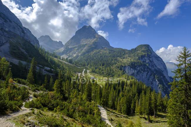 Österreich, Tirol, Blick auf ehrwalder Sonnenspitze, Seebenalm bei Ehrwald, Mieminger Kette — Stockfoto