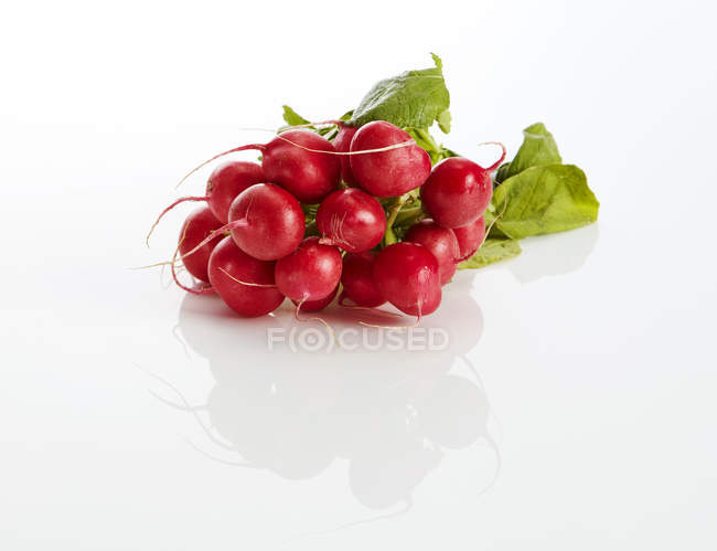 Bunch of red radishes on white ground - foto de stock