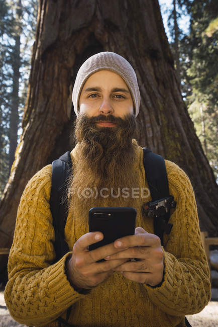 USA, California, Yosemite National Park, Mariposa, portrait of bearded man with cell phone at sequoia tree — Stock Photo