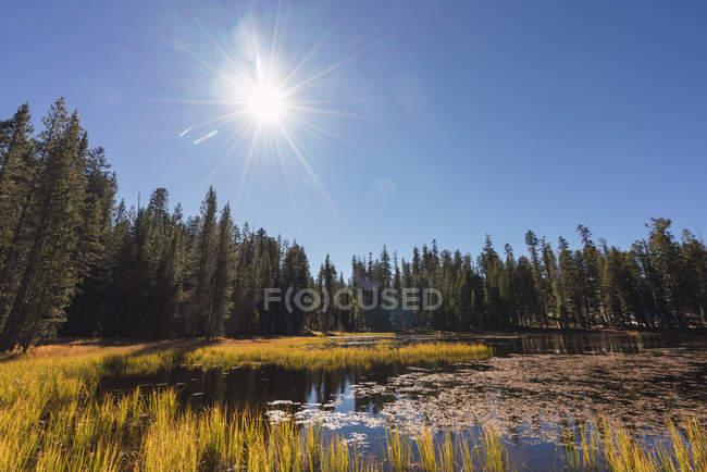 USA, California, Yosemite National Park, lake against the sun in autumn — Stock Photo