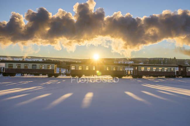 Allemagne, Saxe-Anhalt, Trans-Harz Chemin de fer à voie étroite du Harz contre le soleil du soir — Photo de stock
