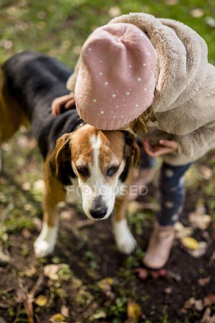 Bambina baci cane in giardino autunnale — Foto stock