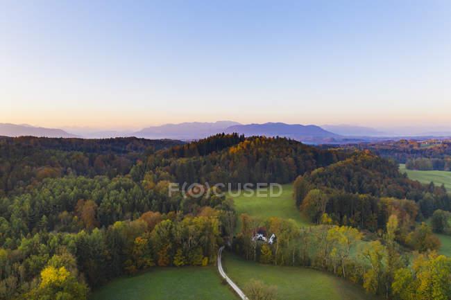 Alemanha, Bavaria superior, terra de Toelzer, Prealps Bavarian, Dietramszell, Zeller Wald, vista aérea da floresta no Outono no nascer do sol — Fotografia de Stock