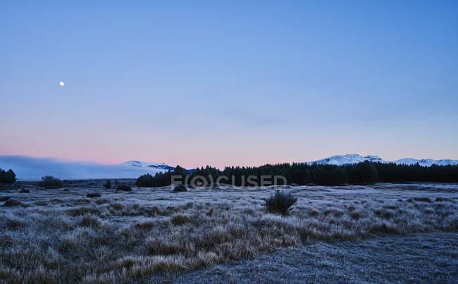 Argentina, Patagonia, Esquel, Laguna La Zeta, steppe landscape with hoarfrost at twilight — Stock Photo