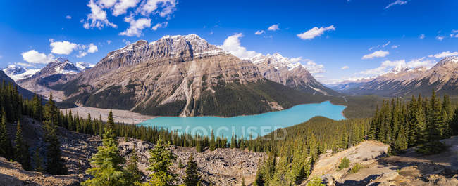 Canada, Alberta, Banff National Park, Peyto Lake — Stock Photo