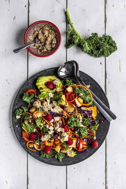 Salada de abacate de couve com repolho vermelho, tomate, cogumelo frito, cenoura, maçã e framboesa — Fotografia de Stock