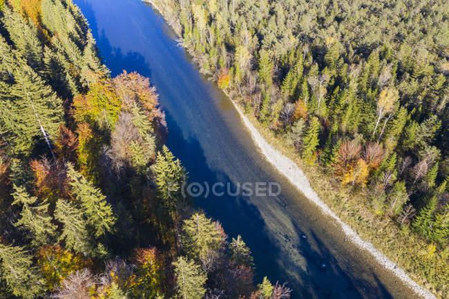 Alemanha, Alta Baviera, Rio Isar, reserva natural Isarauen — Fotografia de Stock
