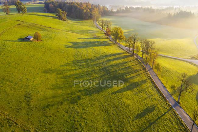 Germania, Baviera, Alta Baviera, Dietramszell, Veduta aerea del vicolo alla luce del mattino — Foto stock