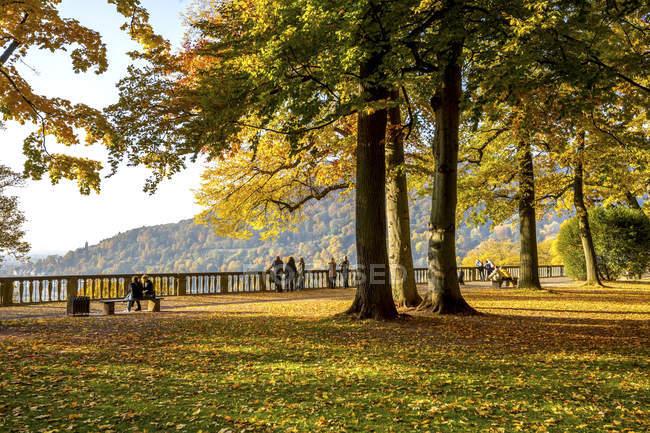 Germania, Baden-Wuerttemberg, Heidelberg, giardino del palazzo in autunno — Foto stock