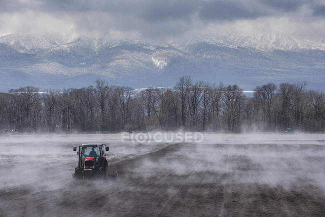 Hokkaido, Tractor sembrando un campo mientras se está vaporizando desde el suelo caliente - foto de stock