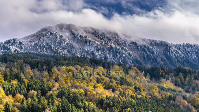 Germany, Bavaria, Oberallgaeu, Gruenten in autumn — Stock Photo