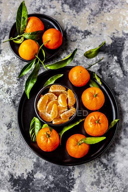 Танінці з листям, на тарілку і шматочки в миску — стокове фото