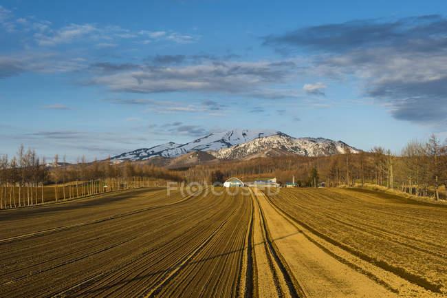 Hokkaido, pequeña granja antes de una montaña cubierta de nieve cerca del Parque Nacional Shiretoko - foto de stock