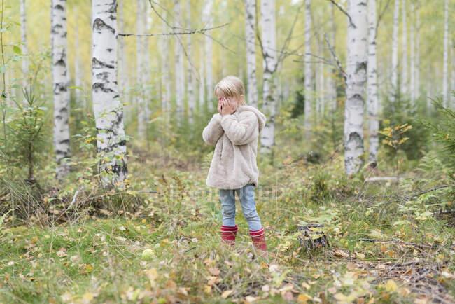 Menina loira jogando Esconder e procurar em uma floresta de vidoeiro — Fotografia de Stock