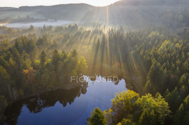 Germania, Baviera, Alta Baviera, Toelzer Land, Dietramszell, alba sulla riserva naturale Klosterfilz — Foto stock