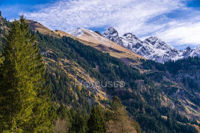 Germany, Bavaria, Oberallgaeu, Allgaeu Alps, Stillach Valley — стокове фото