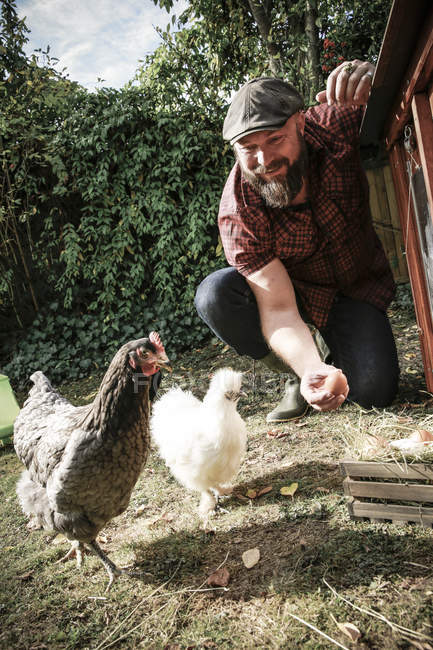Bärtiger Mann im eigenen Garten mit Hühnern, kleine Holzkiste mit Eiern auf Wiese — Stockfoto