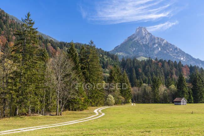 Німеччина, Баварія, Східний Allgaeu, Пфронтен, Алгайські Альпи, Аггенштейн восени — стокове фото