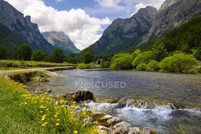 Montenegro, costa adriatica, fiume in montagna — Foto stock