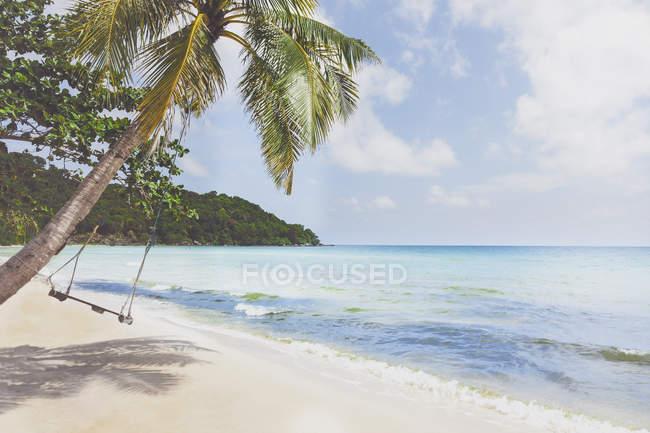 Vietnam, Phu Quoc, spiaggia, altalena su palma — Foto stock
