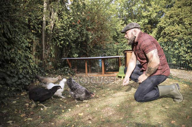 Uomo barbuto nel proprio giardino gamma di alimentazione polli — Foto stock