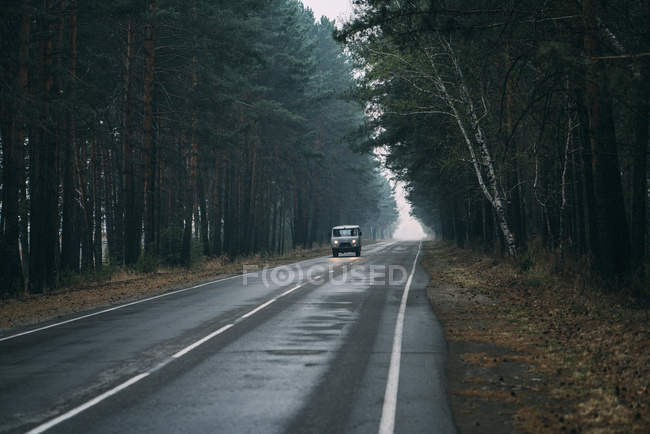 Van driving on country road through pine forest — Stock Photo
