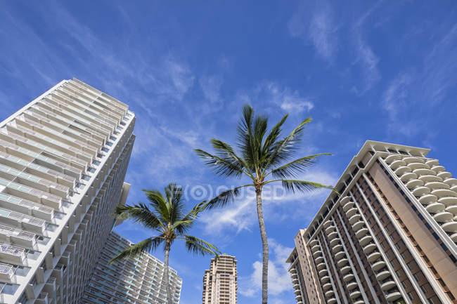 Usa, Hawaii, Oahu, Honolulu, Waikiki, edificios de gran altura, vista de ángulo bajo - foto de stock