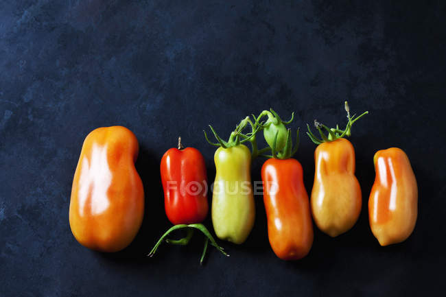 Row of six San Marzano tomatoes on dark ground — Stock Photo
