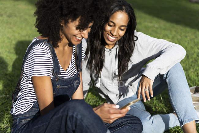Дівчата сидять в парку, розважаються, користуються смартфоном. — стокове фото