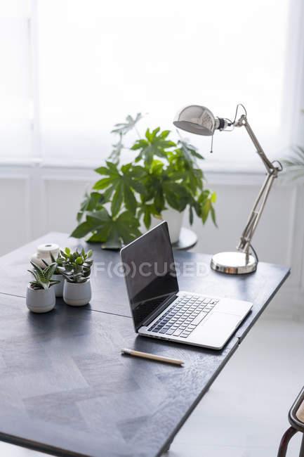 Intérieur d'un espace de coworking moderne — Photo de stock