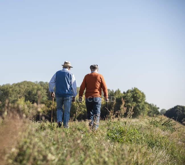 Due vecchi amici che passeggiano per i campi, parlando dei vecchi tempi — Foto stock