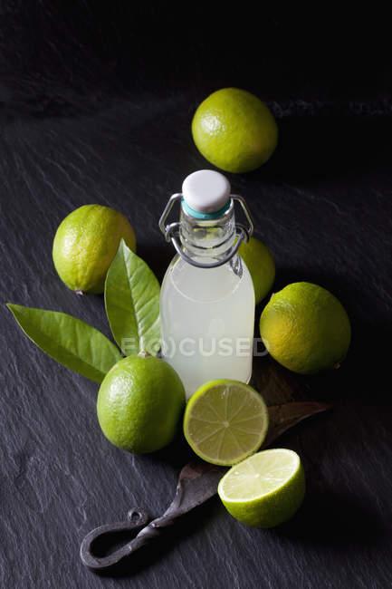 Jus de lime fraîchement pressé dans une bouteille de dessus de balançoire — Photo de stock