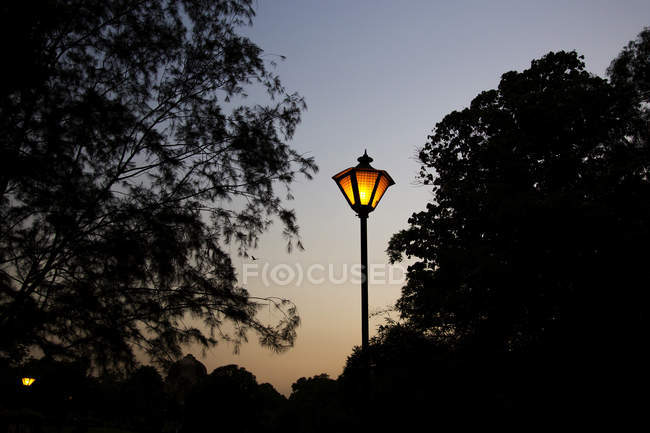 India, Delhi, New Delhi, Lodi gardens, park, lantern — Stock Photo