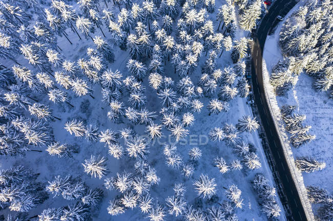 Germany, Hesse, Taunus, Aerial view of road through coniferous forest in winter — Stock Photo