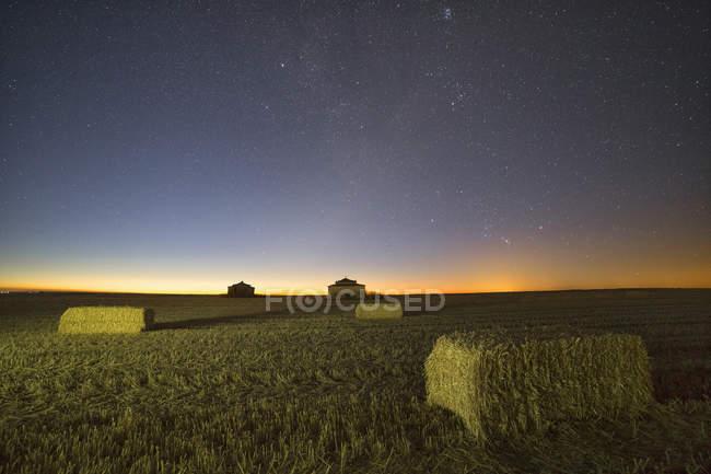 España, Provincia de Zamora, Paloma en Otero de Sariegos, campo por la noche - foto de stock