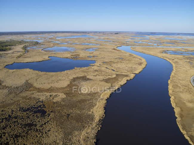 США, Меріленд, Кембридж, Блекуотер національного притулку дикої природи, Блекуотер річки, Блекуотер притулок переживає підвищення рівня моря, що повені цього болото — стокове фото