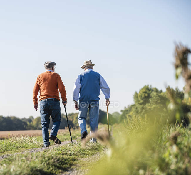 Two old friends taking a stroll through the fields, talking about old times — Stock Photo