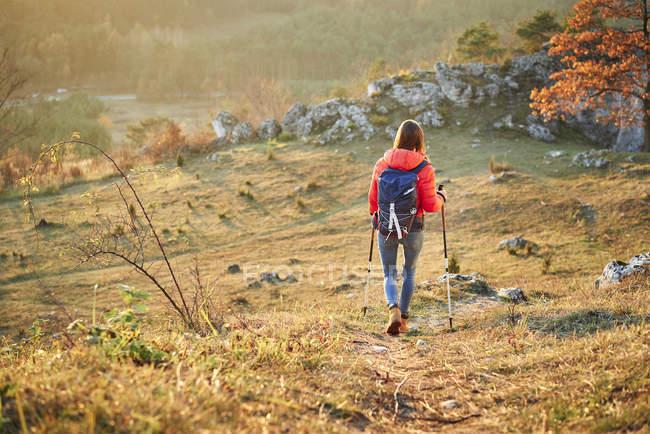 Vue arrière d'une femme marchant sur un sentier de randonnée dans les montagnes — Photo de stock