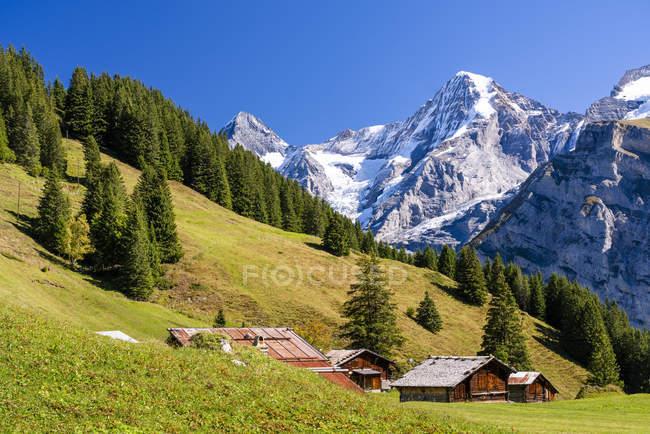 Switzerland, Bernese Oberland, Birg, Blumental near Muerren — Stock Photo