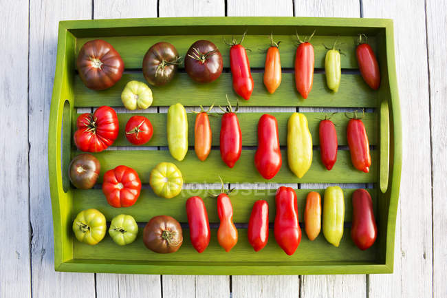 Деревянный поднос с различными помидорами, стадия зрелости, незрелые и спелые — стоковое фото