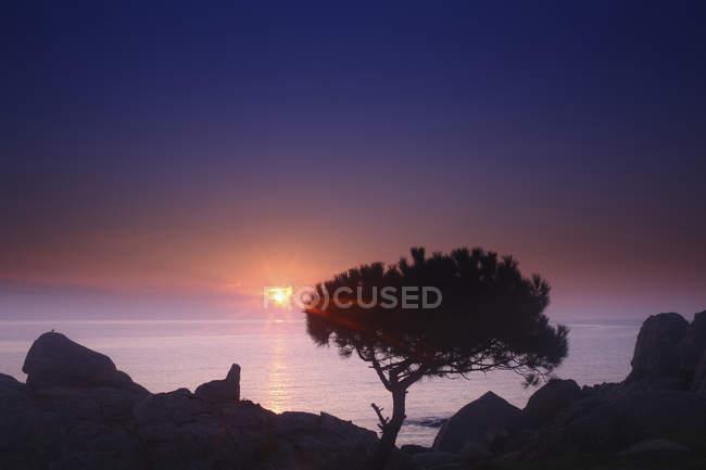 Spagna, Cala S'Alguer, Costa Brava, tramonto sulla costa — Foto stock